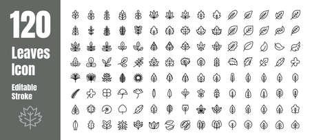 Spring and Autumn Leaf Outline line Icon Set. Minimal Style Illustration Vector. Editable Stroke Иллюстрация