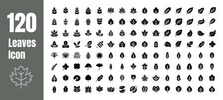 Spring and Autumn Leaf Solid Glyph Icon Set. Minimal Style Illustration Vector.