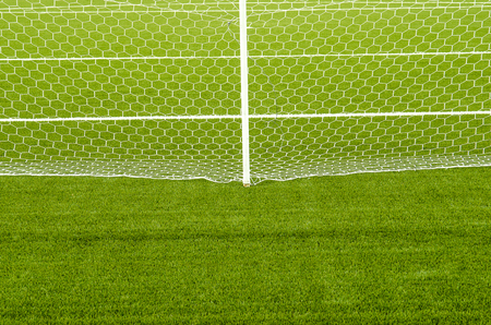 The white Net marking on the artificial green grass soccer field