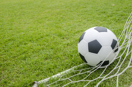 The football with the net on the green grass soccer field.