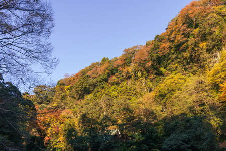 Takachiho Gorge in Autumn, a mythical village Stok Fotoğraf