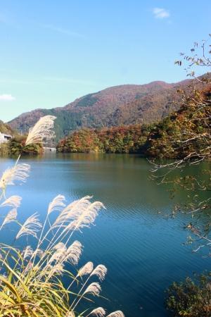 Beautiful lake with autumn leaves in Gokayama Japan