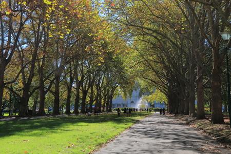 melbourne australia: Carlton Gardens Autumn Melbourne Australia
