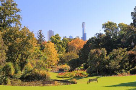 botanic: Botanic Gardens cityscape Melbourne Australia