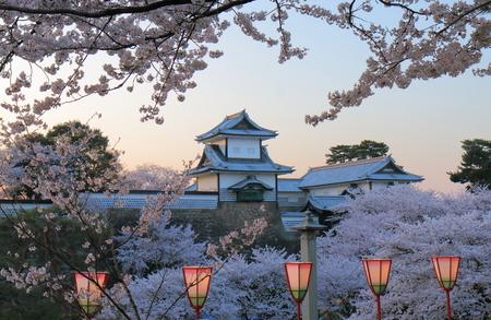Cherry blossom and Kanazawa castle in Kanazawa Japan