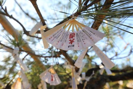 Kyoto Giappone - 4 maggio 2018: Omikuji impiccato sugli alberi al tempio Chionji Kyoto in Giappone. Omikuji è fortuna casuale scritta su strisce di carta nei santuari shintoisti e nei templi buddisti in Giappone.