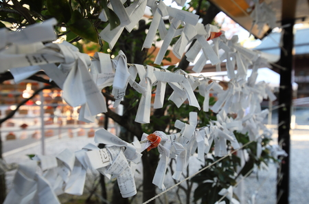 ISE Japan - November 10, 2018: Omikuji fortune paper at Sarutahiko at the shrine Ise city Japan. Omikuji is random fortunes written on strips of paper at Shinto shrines and Buddhist temples in Japan.