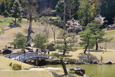 Japanese traditional garden with wooden bridge pond