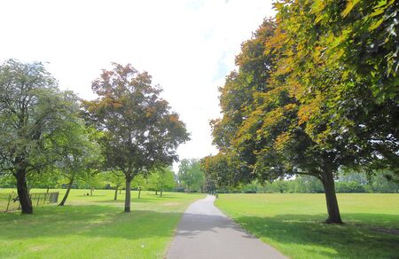 Regent park nature in London UK Standard-Bild