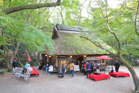 Nara Japan - November 10, 2019: Unidentified people visit Nara park cafe restaurant Nara Japan