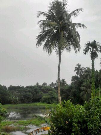 Indian Village Landscape Stock Photo