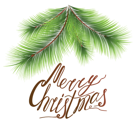 Christmas Tree Branches image with lettering design. Vector Illustration EPS10 with sayings Merry Christmas made in hand drawn style on the white Illustration