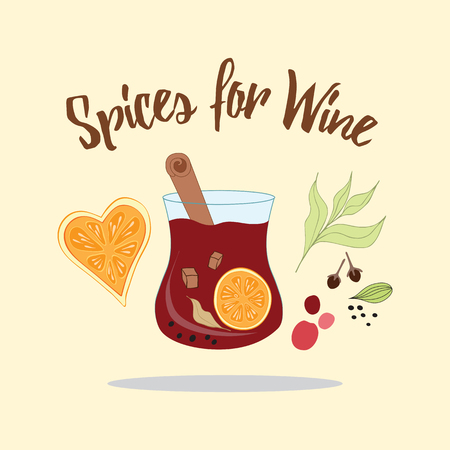 cloves: Mulled red wine with glass of drink and hand drawn ingredients: herbs, dry orange, dry berries, cardamom, cinnamon, cloves, brown sugar