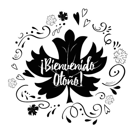 Hello autumn hand lettering phrase with black romantic hand drawn ornament, maple leaf in Spanish