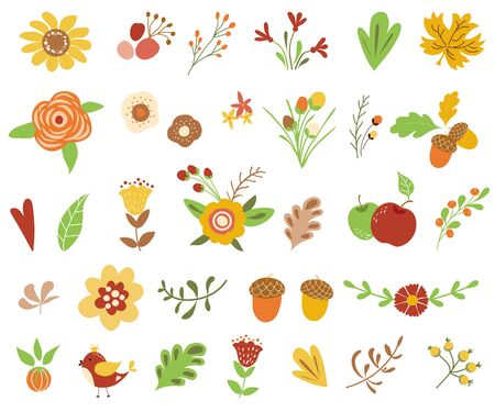 Autumn floral set Colorful floral collection yellow terracotta flowers leaves berries Autumn floral clipart Vector illustration Иллюстрация