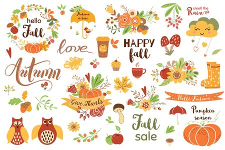 Autumn floral set. Colorful floral elements for fall floral clipart Flowers owl pumpkin apple floral bouquet vector Illustration
