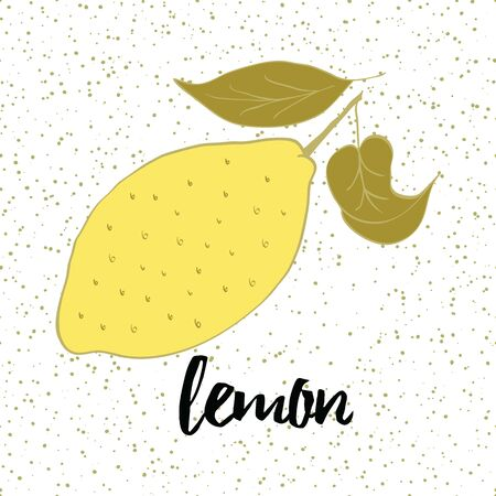Hand drawn fresh lemon with leaves on the white background with drops. 向量圖像
