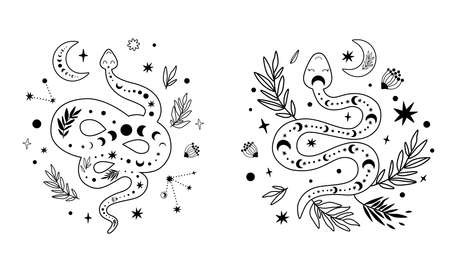 Floral snake set. Celestial serpent moon phase, flowers, leaves, crescent. Mystical hand drawn graphic element. 스톡 콘텐츠