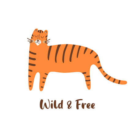 Cute tiger. Wild cat illustration. Hand drawn tiger animal. Wild life print. Isolated graphic element. Vettoriali