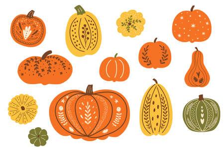 Thanksgiving festive pumpkins. Decorative fall pumpkins set. Autumn pumpkins vector. Top view pumpkin isolated graphic elements. Hand drawn autumn harvest collection. Thanksgiving day illustration. Illustration