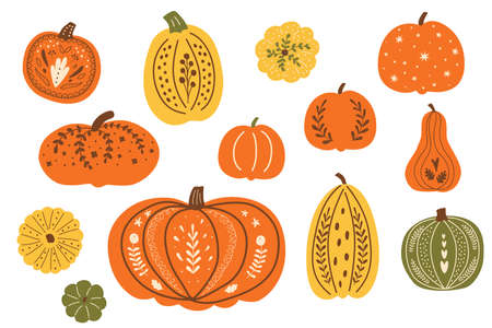 Thanksgiving festive pumpkins. Decorative fall pumpkins set. Autumn pumpkins drawing. Top view pumpkin isolated graphic elements. Hand drawn autumn harvest collection. Thanksgiving day illustration.