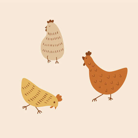 Cute chicken cartoon. Cute chickens set. Funny hens and roosters walking, standing isolated elements