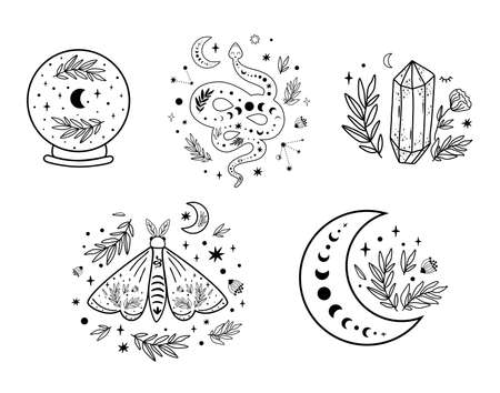 Celestial set. Floral moon circle  moon  . Moon phase, floral crystal, serpent, snake, moth, butterfly, crystal ball, stars occult collection. Celestial crescent. Vector illustration. Illustration
