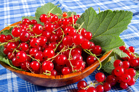 Red currant in a wooden bowl on a blue placemat photo