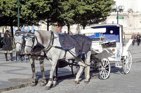 horse drawn carriage: Czech Republic, Prague, October 4, 2014-horse carriage in Old Town Square in Prague