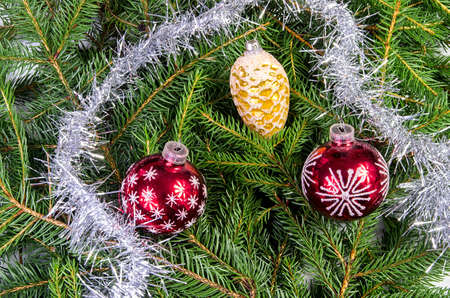 kugel: Three Christmas ornaments with silver chain on spruce branches