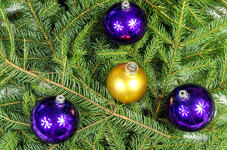 kugel: Four Christmas ornaments lying on spruce branches