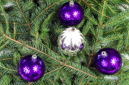 Four Christmas ornaments lying on spruce branches photo