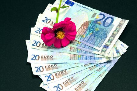 twenty euro banknote: Nine twenty euro banknote on black background