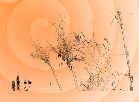 dry grass: Orange spirals were made of dry grass silhouettes Stock Photo