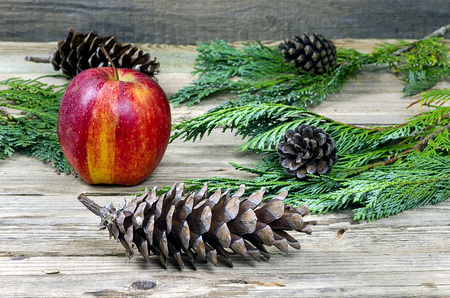 Old pine cone with an apple on wooden background photo