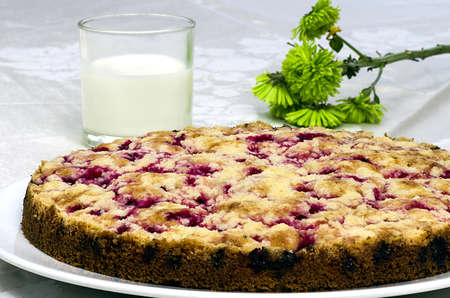 Currant souffle with a glass of milk and green plants photo