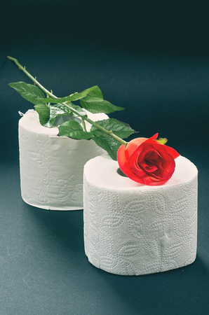 White toilet paper with red rose on a black background photo