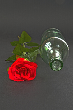 retreat: Red rose with empty bottle on a black background, a romantic retreat, art