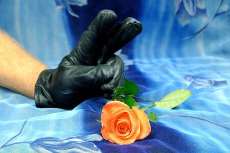 victory symbol: Pink rose and hand with a black glove showing victory symbol on a blue background, art, decoration