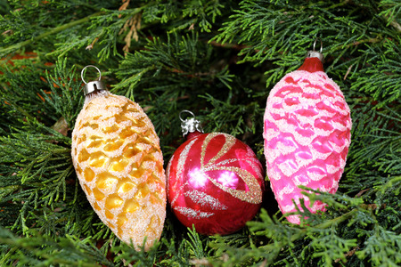pine three: Three colorful Christmas decorations on green pine needles, red and orange, Santa Claus, Christmas time