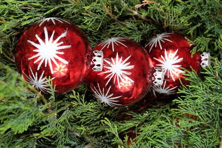 pine three: Three red Christmas balls on green pine needles, Santa Claus, Christmas time