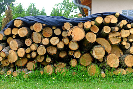 winter wood: Pile of sawn oak wood of the covered tarp against rain, heating, cold
