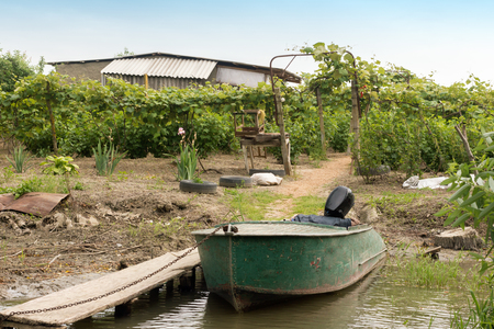 Typical farming of local residents in Vilkovo, Ukraine, where grapes, strawberries, raspberries are grown and others, and you can also go fishing on the beautiful Danube river.