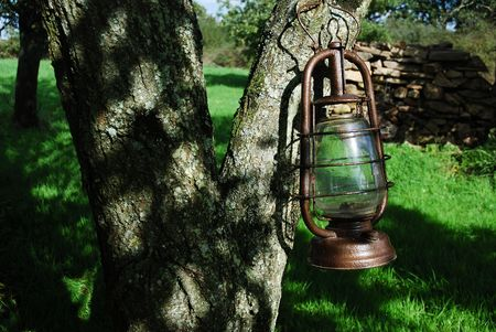 Old kerosene lamp hanged on a tree Stock Photo