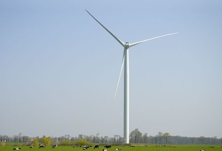 Cows in a meadow pasturing  below an horizontal axis three-bladed wind turbine.