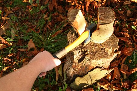 wood split with axe. chopping firewood in forest in autumn Stock Photo - 5777531