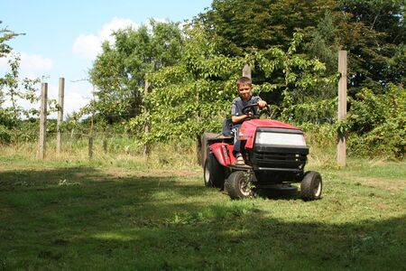 mowing grass: child mowing grass on garden tractor. garden with boy on red vehicle gardening Stock Photo