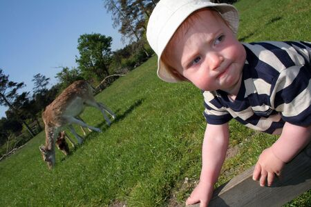 child or toddler in deer park. baby boyclimb towards wildlife photo