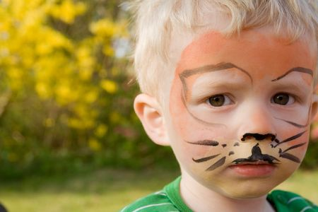 face paint on child. boy as tiger with make-up in garden photo