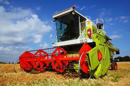 mietitrebbiatrice nel campo. macchina grande fattoria in rosso e verde brillante. attrezzature agricole per la raccolta di coltura  Archivio Fotografico